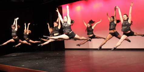 Dance leaps for joy in annual show