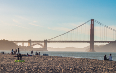 What to do in the Bay Area