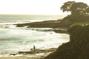 Cities heatin' up spring fever- Santa Cruz