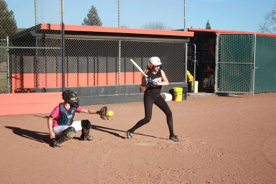 Softball eager to return to NCS