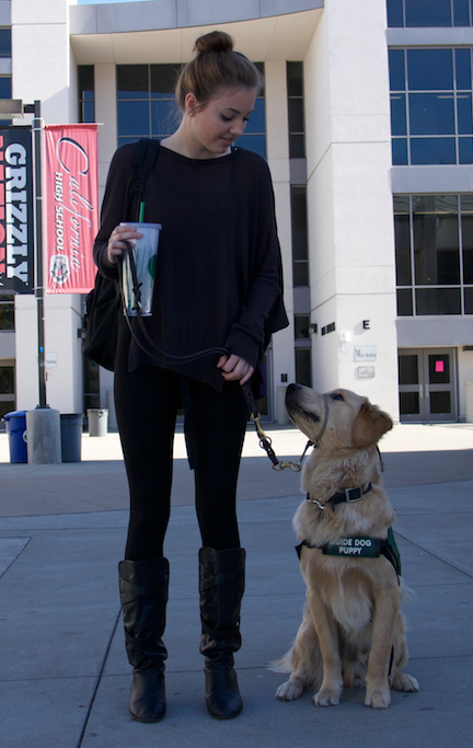 Senior+Niamh+Horn+stops+on+campus+with+Sanjay%2C+the+one-year-old+golden+retriever+she%E2%80%99s+been+training+since+January.