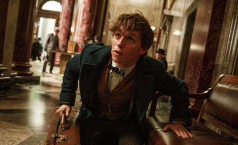 'Fantastic Beasts' is a success