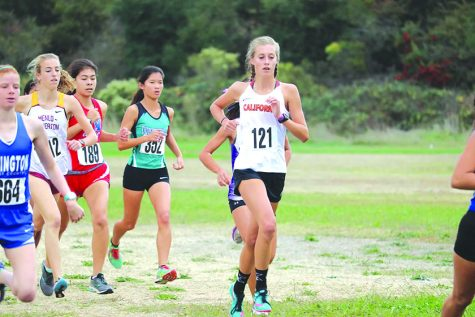 Cross country duo runs to state finals