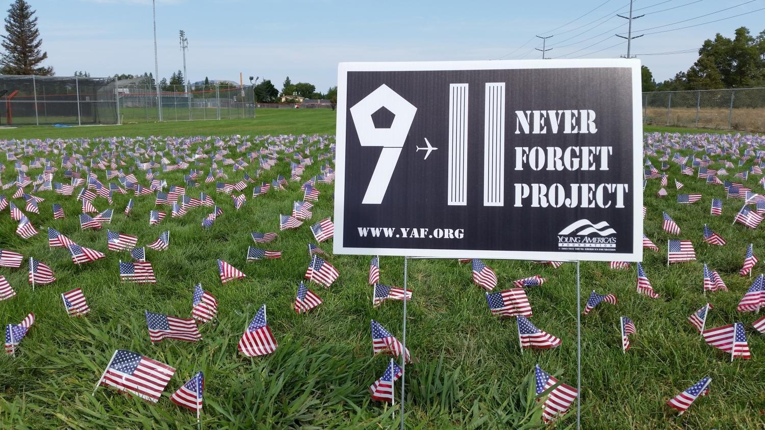 The Freedom Alliance Club placed American flags behind the Ed Noble baseball field for September 11.