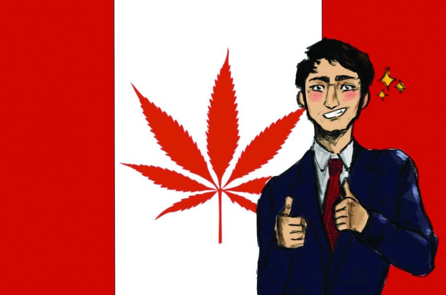 "The swift embrace of recreational marijuana use in Canada comes with a dark reality; according to Huffington Post, there have been over 56,000 ""police reported incidents"" of cannabis possession in Canada since Justin Trudeau became Prime Minister."