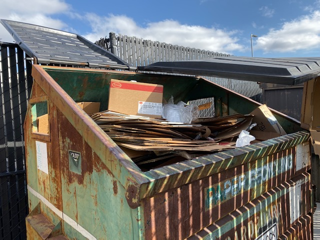 Cardboard boxes are placed in one of the recycling dumpsters in the back parking lot.