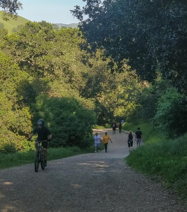 The Tri-Valley is home to many outdoor trails used by equestrians, pedestrians, and cyclists, such as the Pleasanton Ridge Trail.